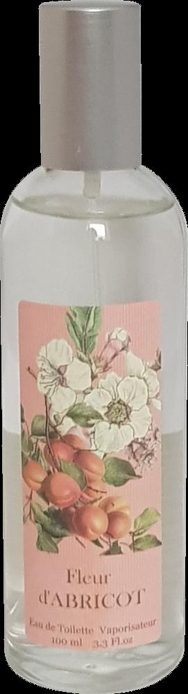 Provence et Nature Abricot Fleur, 1er Pack (1 x 100 ml)